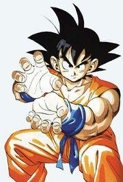 Goku-Hame-Kame-Picture