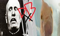 Mussolinis