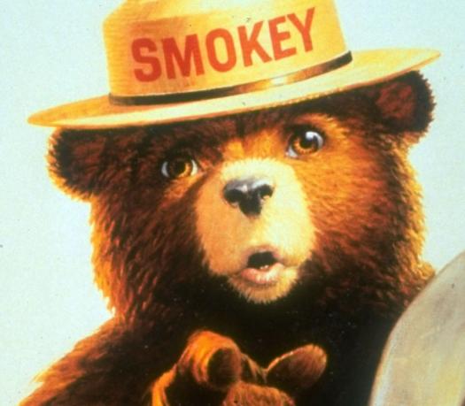 smokey bear dbx fanon wikia fandom powered by wikia