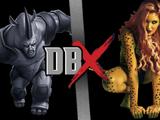 Rhino vs Cheetah