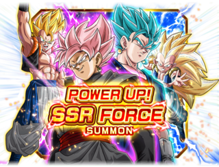 SSR Force Banner