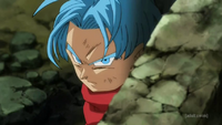 SSR Trunks Origin