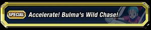 Bulma's Wild Chase