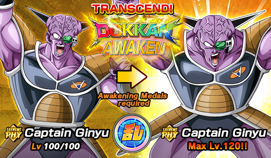 rank exp dokkan battle guide