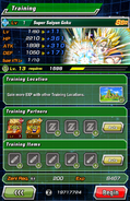 Super Attack Level Training 3