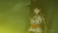 TUR Int Goku Black Origin