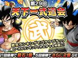 World Tournament n°29 (Japan)