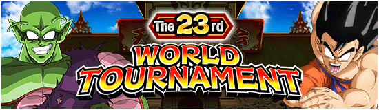The 23rd WT
