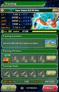 Super Attack Level Training 5