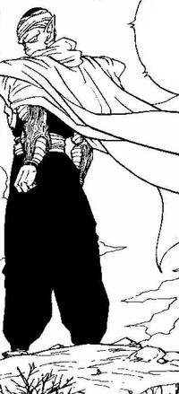 Piccolo turns