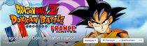 DBZ FB french group