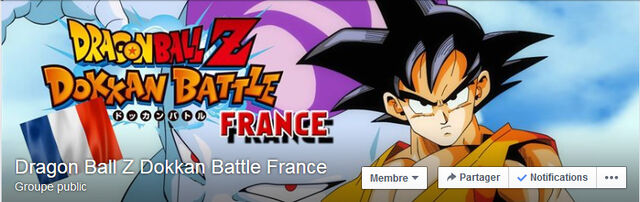 File:DBZ FB french group.jpg
