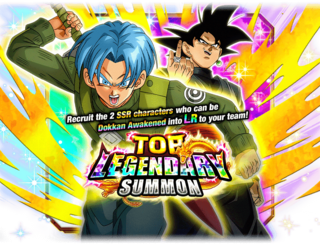 Trunks (Teen) (Future) and Goku Black TopLegendarySummon