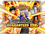 World Tournament Guaranteed SSR Summon