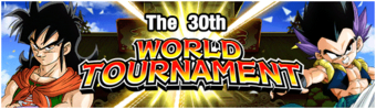 The 30th WT