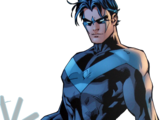 Costume de Nightwing
