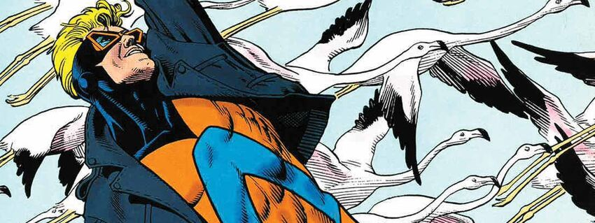 Animal Man Cover (NT)