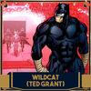 Icône Wildcat (Ted Grant)