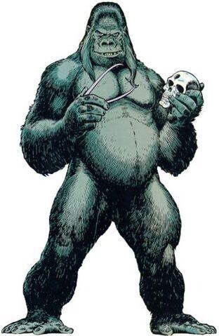 File:Gorilla Grodd.jpeg