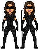 Black_canary_suit.png