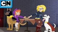 Pups to the Rescue! DC Super Hero Girls Cartoon Network