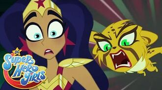 Not All Cats Land On Their Feet 🐱 DC Super Hero Girls