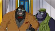 DCSHG's Gorilla Warfare