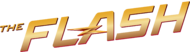 Flash Logo large