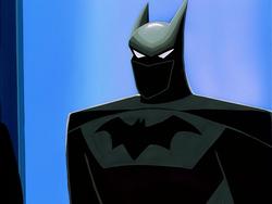 Batsuit Display