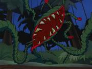 Poison Carnivore Plant