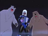 Freeze polar bears