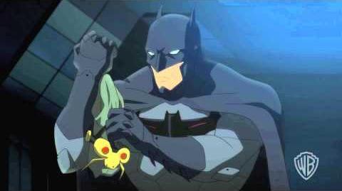 Batman vs Robin - Owl Fight