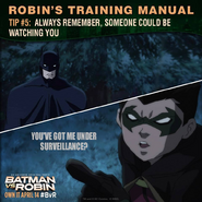 Batman vs. Robin Robin's training manual tip 5