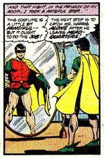 Bruce, o Primeiro Robin