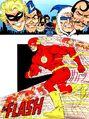 Flash 0004