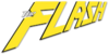 Flash logo portal