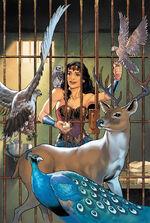Diana é visitada pelos Deuses do Olimpo em suas formas animais, que concedem seus grandes poderes