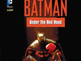Batman: Under the Red Hood Boek 2