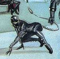Catwoman II Earth-22 001