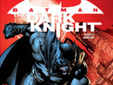 Batman: The Dark Knight Boek 1: Angsten