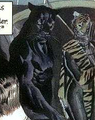 Wildcat Huntress Earth-22