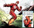 Flash 0066