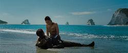 Steve Trevor e Diana na praia