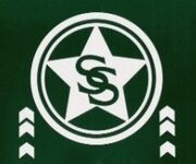 Smallville Sentinel