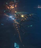 Squid cruiser