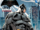 Batman v Superman Dawn of Justice – Batman cover.png
