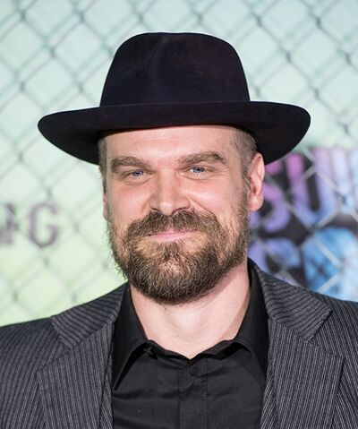 File:David Harbour.jpg
