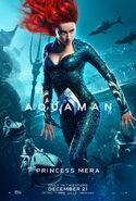 Aquaman - Princess Mera character poster