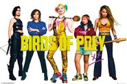 The Birds Of frickin Prey