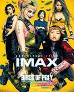Birds of Prey - IMAX Poster